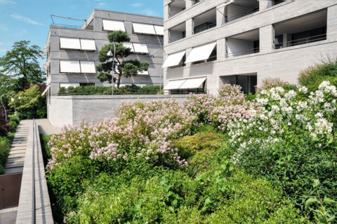 Wohnüberbauung-Wohnsiedlung-Landschaftsarchitektur-1