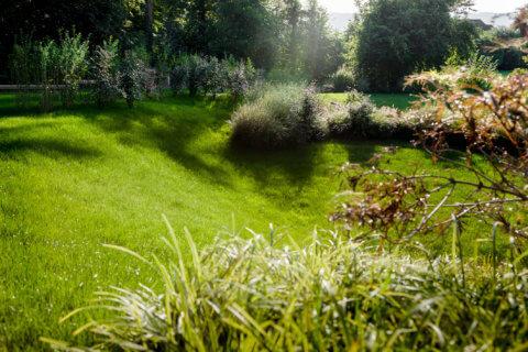 mfh-greenside-landschaftsarchitektur-5