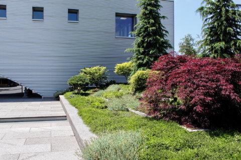Pflanzplanung-Landschaftsarchitektur-Geschäftsgebäude-Eingang