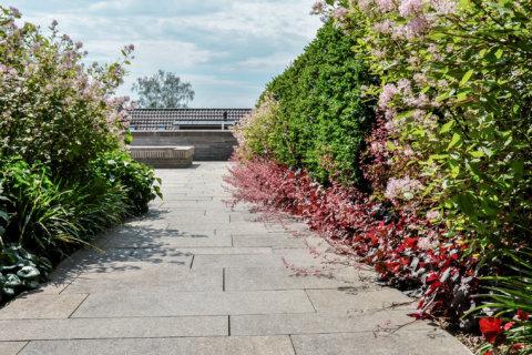 Pflanzplanung-Landschaftsarchitektur-Wohnüberbauung-1