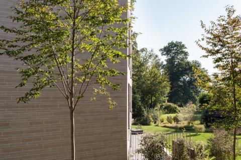 Pflanzplanung-Landschaftsarchitektur-Wohnüberbauung-3
