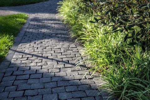 Pflanzplanung-Landschaftsarchitektur-Wohnüberbauung-Weg-Pflastersteine