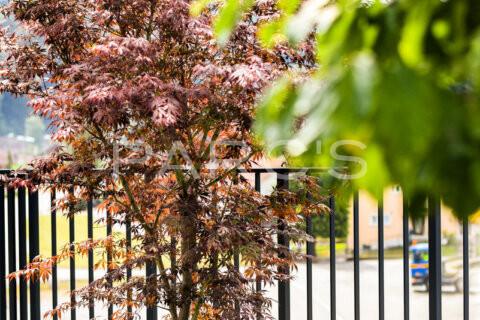 low-fav-fertige-terrassengestaltung-fbb-egli-jona-jul2020