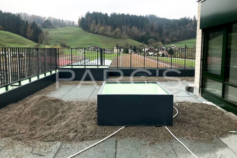 terrassengestaltung-geschaeftshaus-firmenterrasse-egli-jona-gartenbau-parcs-gartengestaltung-4